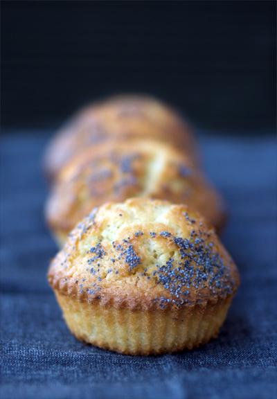 Muffin al lime e semi di papavero