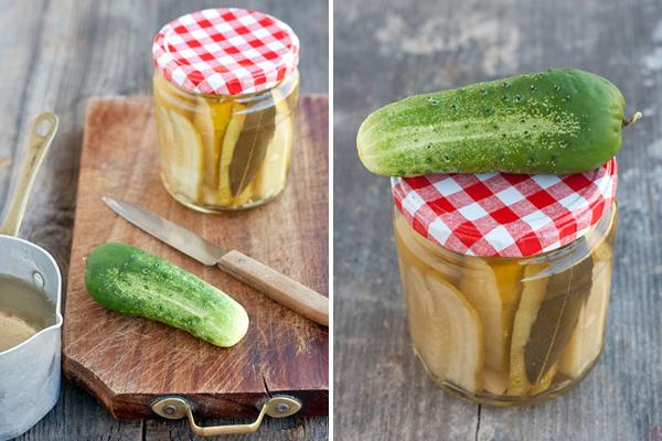 Pickled cucumber gherkins